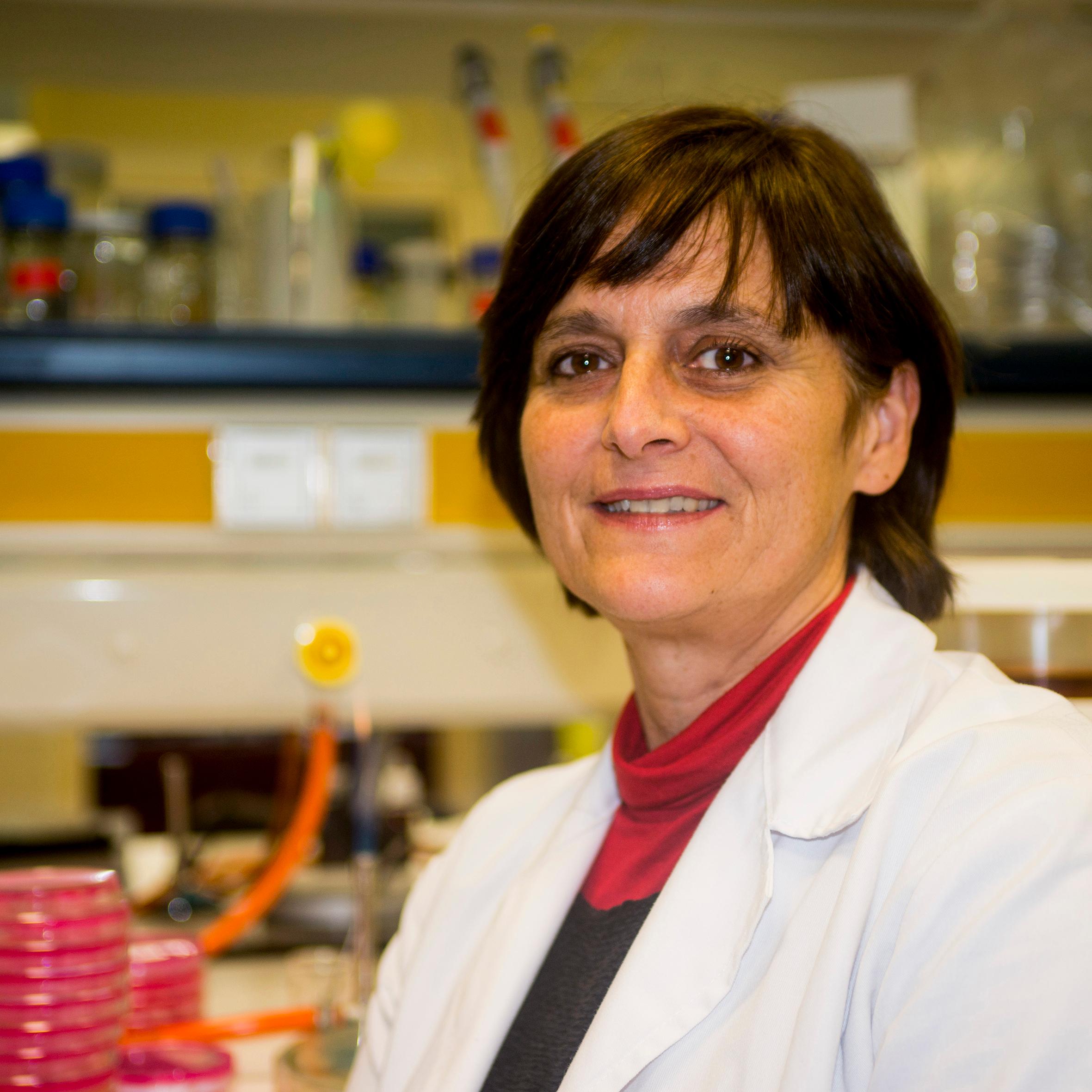 Prof. Maria J Lopez, UAL